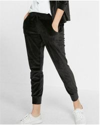 Express | One Eleven Velour Jogger Pant | Lyst