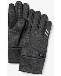 Express Charcoal Touchscreen Compatible Tech Gloves Gray S/m