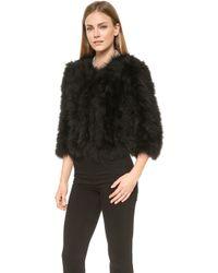 Jocelyn Marabou Feather Bolero  Black - Lyst
