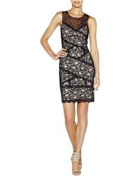 Nicole Miller Amy Stretch Lace Banded Dress - Lyst