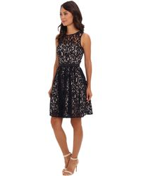 Eliza J Sleeveless Lace Fit  Flare Dress - Lyst