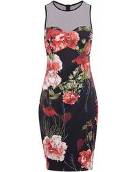 Karen Millen Beautiful Rose Print Dress - Lyst