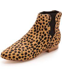 Loeffler Randall Indie Chelsea Haircalf Booties  Cheetah - Lyst