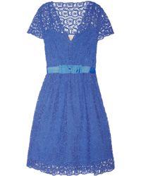 Collette by Collette Dinnigan | Portobello Cotton-Lace Dress | Lyst