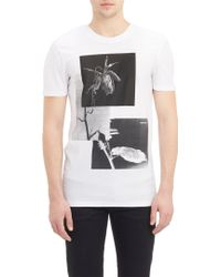 Helmut Lang Wilted Rose Graphic T-Shirt - Lyst