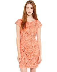 Vince Camuto Orange Lace Sheath Dress - Lyst