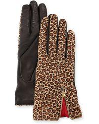 Diane von Furstenberg - Leopard-print Calf Hair/leather Gloves - Lyst