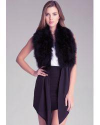 Bebe Feather Tie Front Collar - Black