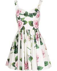Dolce & Gabbana ローズプリント ドレス - マルチカラー