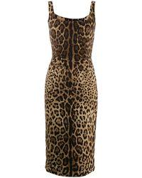 Dolce & Gabbana - Robe ajustée à imprimé léopard - Lyst