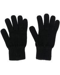 Calvin Klein Bax ファインニット 手袋 - ブラック