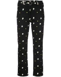 Miaou Daisy Embroidered Pants - Black