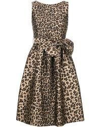 P.A.R.O.S.H. - Bow Detail Leopard Print Dress - Lyst