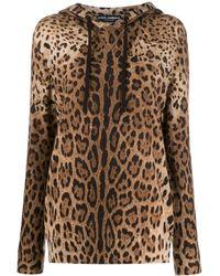 Dolce & Gabbana Кашемировое Худи С Леопардовым Узором - Коричневый