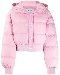 MSGM パデッドジャケット - ピンク