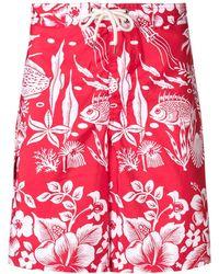 Polo Ralph Lauren Printed Swim Shorts - Red