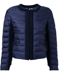 MUVEIL Cropped Padded Jacket - Blue