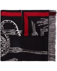 Alexander McQueen Animal Skeleton Print Scarf - Black