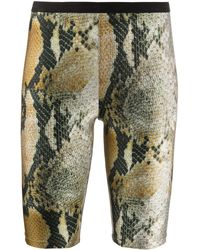 MSGM Snakeskin Effect Cycling Shorts - Black