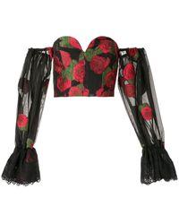 Bambah Roses Off Shoulder Corset - Black