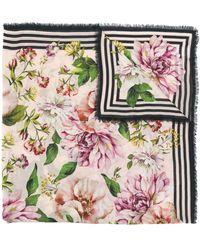 Dolce & Gabbana - フローラル スカーフ - Lyst
