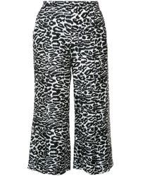 Piamita - Black Leopard Print Cropped Pant - Lyst