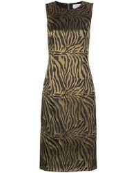Prabal Gurung タイガープリント ドレス - マルチカラー