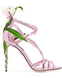 Dolce & Gabbana Kiera Sandalen - Roze