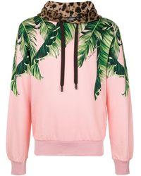 Dolce & Gabbana Худи С Принтом - Розовый