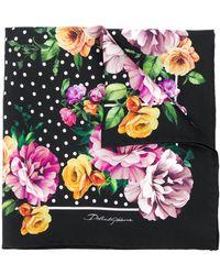 Dolce & Gabbana Floral Dotted Foulard - Black