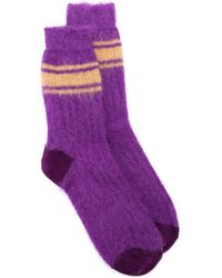 Golden Goose Deluxe Brand Tsutsuji Socks - Purple