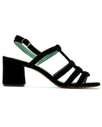 Blue Bird Shoes Daniela Velvet Sandals - Black