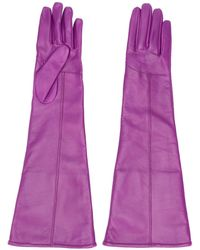 MSGM Long Stitched Panel Gloves - Purple