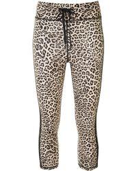 The Upside - Leggings mit Leoparden-Print - Lyst