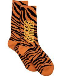 Stadium Goods Tiger-pattern Socks - Orange