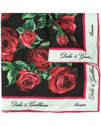 Dolce & Gabbana ローズプリント スカーフ - マルチカラー