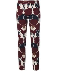 P.A.R.O.S.H. - Skinny Floral Print Trousers - Lyst