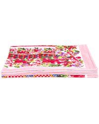 Dolce & Gabbana Serviette de plage imprimée Mambo - Rose