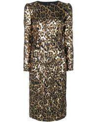 Dolce & Gabbana Midi Jurk Met Luipaarddessin En Pailletten - Metallic