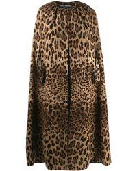 Dolce & Gabbana Длинный Кейп С Леопардовым Узором - Многоцветный