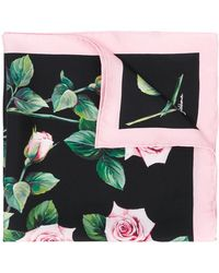 Dolce & Gabbana Rose-print Square Scarf - Black