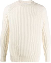 Harmony Ribbed Knit Jumper - White