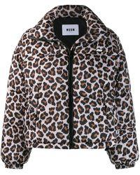 MSGM Куртка-бомбер С Леопардовым Принтом - Многоцветный