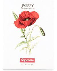 Supreme Poppy Seeds - Red