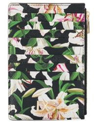 Dolce & Gabbana カードケース - マルチカラー