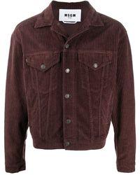 MSGM Укороченная Вельветовая Куртка - Коричневый