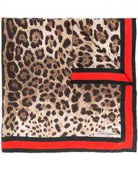 Dolce & Gabbana Шейный Платок С Леопардовым Принтом - Коричневый