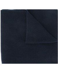 Tommy Hilfiger ロゴ スカーフ - ブルー