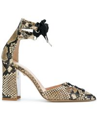 Just Cavalli   Snake Effect Court Court Shoes   Lyst