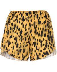 Anine Bing Шорты Jade С Леопардовым Принтом - Многоцветный